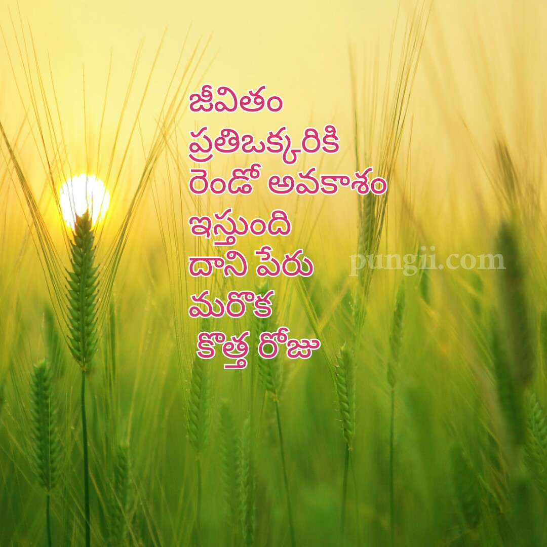 Beautiful And Inspirational Life Quotes In Telugu