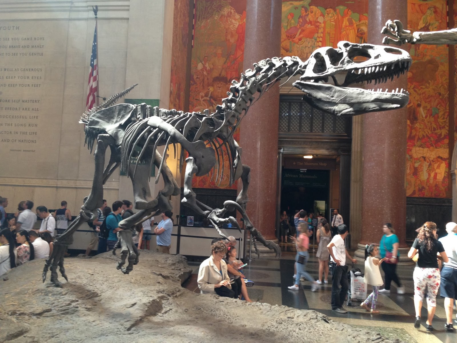 TRex at the Museum of Natural History, NYC. Li, a Scottish and NYC lifestyle blogger talks about the 26 things that she loves about NYC