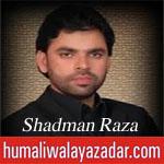 http://www.shiavideoshd.com/2015/07/yeh-janaza-hai-ali-ka-nohay-by-shadman.html
