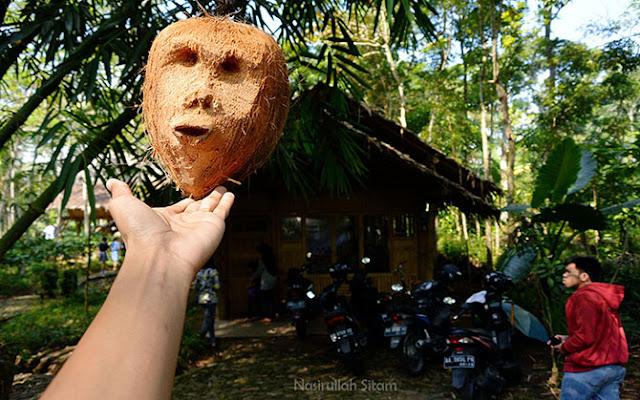 Kreasi wajah terbuat dari Kelapa kering
