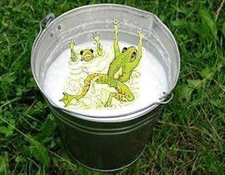 La storia delle due rane nel latte
