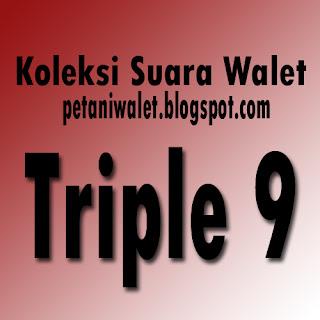 Download Suara Walet Triple 9 (SP)