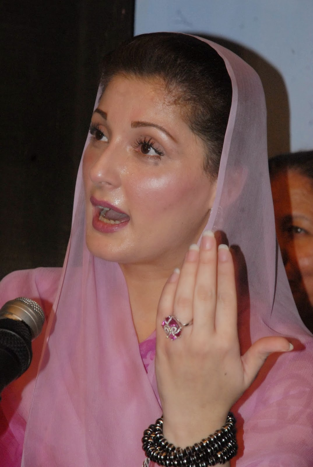 Hot And Sexy Politician Photos Maryam Nawaz Sharif Hd -8717