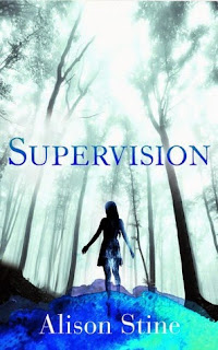 Supervision by Alison Stine