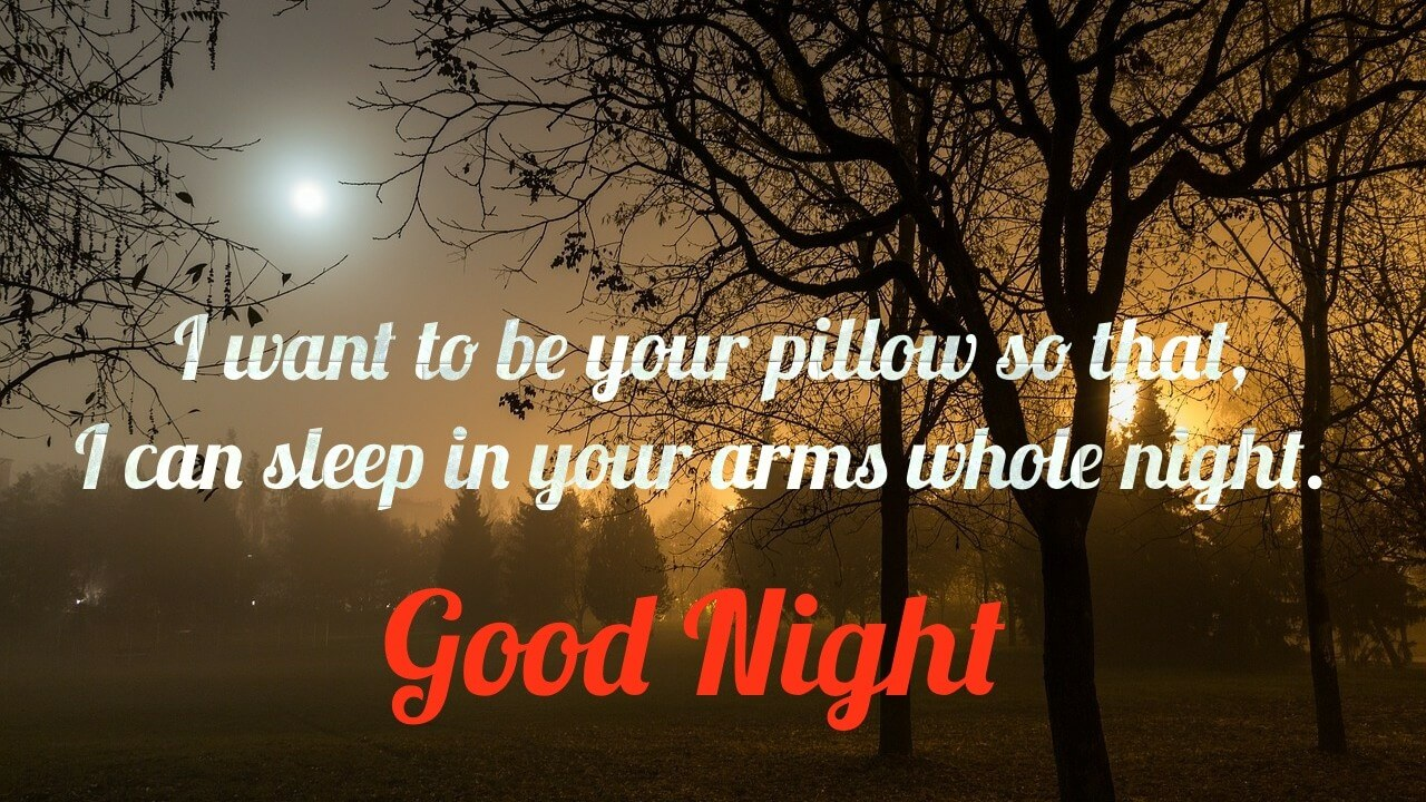 I want to be your pillow so that - Romantic Gud night cute message image