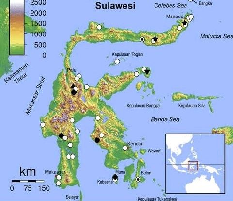Survei PRI: Prabowo-Sandi Unggul Di Pulau Sulawesi