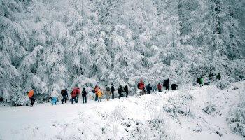اجمل المناطق الثلجية بتركيا 8