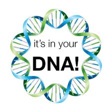 VLCC DNA Slim