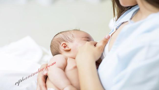 Emziren Anneler İçin Beslenme Önerileri - www.viphanimlar.com