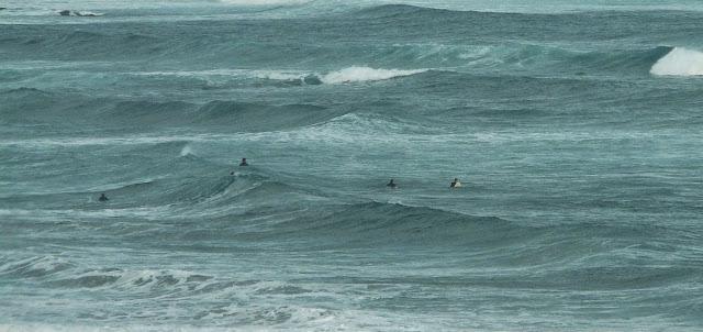 surfistas esperando una ola