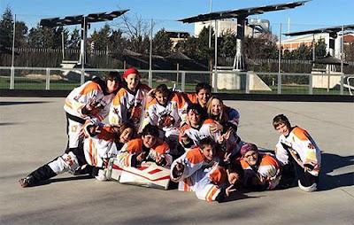 Hockey Los Tigres de Aranjuez