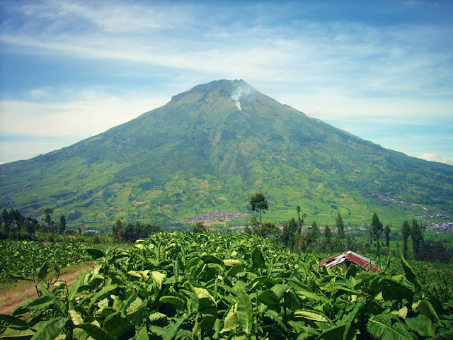 Sumbing Mountain Trekking Tour
