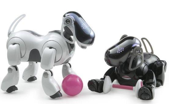Sony prepara lanzamiento de nuevo robot mascota