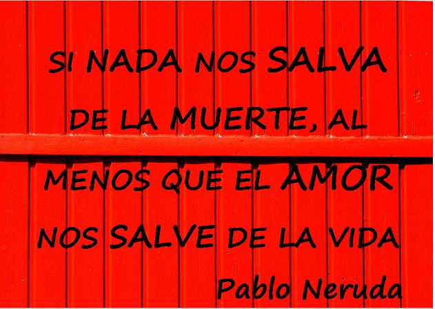 Lecciones Para Amar Frase Sobre El Amor De Pablo Neruda