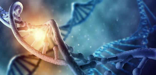Resultado de imagem para Ateus estão sem respostas: Cientistas concluem que ''todos os seres humanos descendem de um mesmo casal''