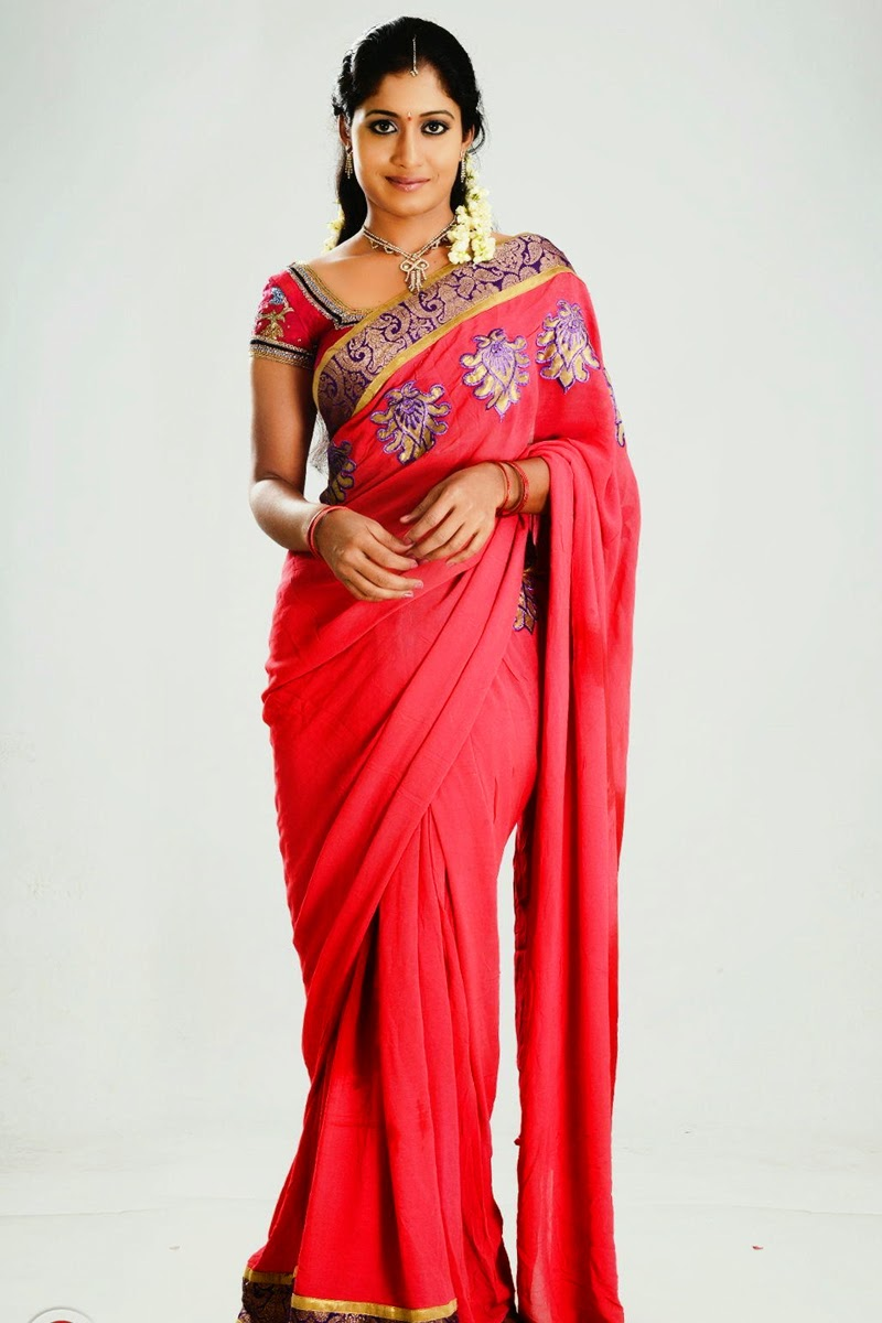 South indian saree wearing beautiful girl prameela latest gorgeous indian beauty 39 s large unseen - Indian beautiful models hd wallpapers ...