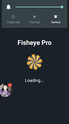 kamera fisheye untuk efek foto cembung
