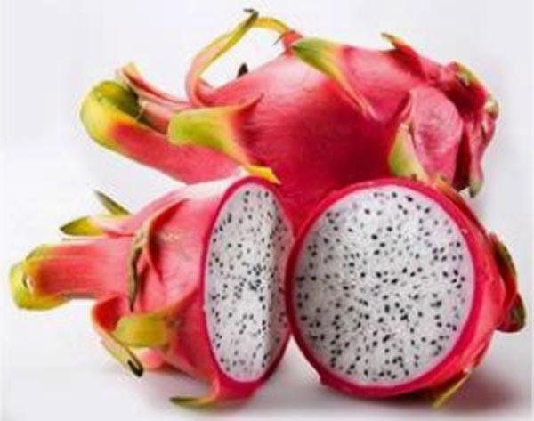 manfaat buah naga bagi ibu hamil
