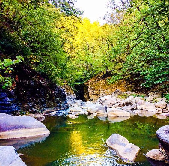Lankaran Forest - Foto di di MirNazrin Huseynzade, Pinterest
