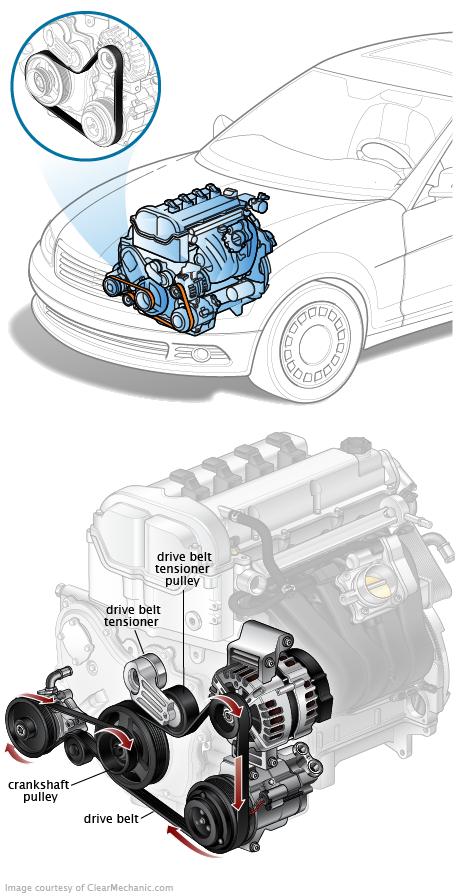Courroie de transmission / courroie de ventilateur