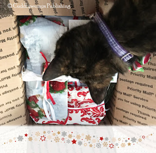 Real Cat Paisley inspects the contents of the Secret Paws package