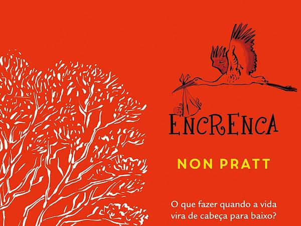 Resenha #298 - Encrenca - Non Pratt - Verus Editora