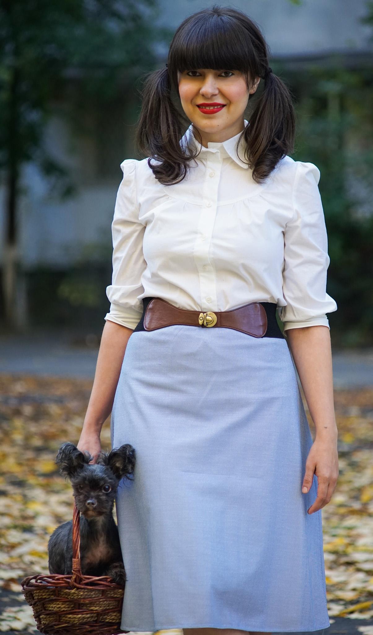 easy DIY Halloween costume dorothy white shirt blue skirt basket dog doggy stuffed toy stuffed bear  sc 1 st  Miss Green & Miss Green: Easy DIY Halloween Costume - Dorothy