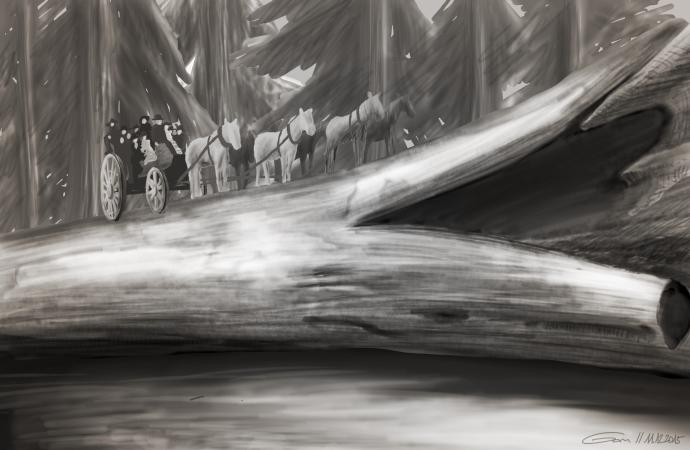 diligence sur Séquoia géant