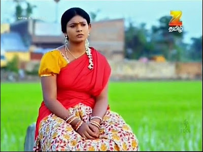Yaaradi Nee Mohini, Zee Tamil,
