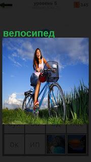 По зеленой траве едет девушка на велосипеде с корзинкой впереди