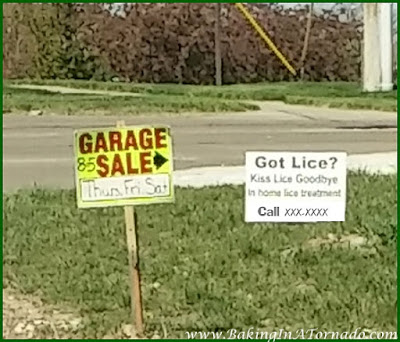 Got Lice Sign | www.BakingInATornado.com | #humor #funny