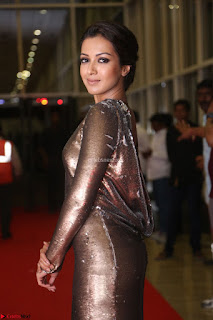 Actress Catherine Tresa in Golden Skin Tight Backless Gown at Gautam Nanda music launchi ~ Exclusive Celebrities Galleries 043.JPG