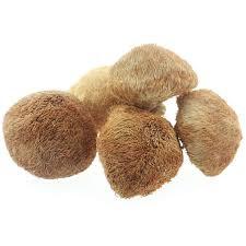 李曉汶 | 肺癌常用中藥 – 猴頭菇
