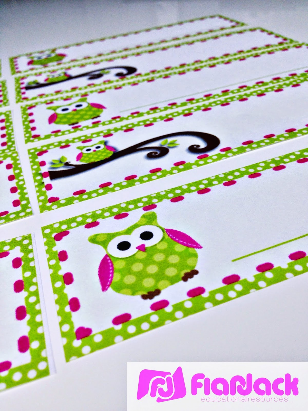 Flapjack Educational Resources Lots Of Owls Classroom