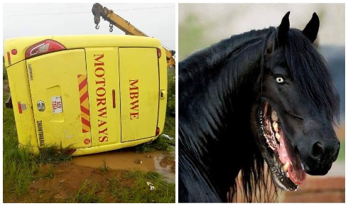 """Zambian Bus Driver Releases Evidence Of """"A Spiritual Dog"""" That Caused Accident"""
