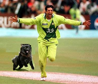 Cricket Funs Thread