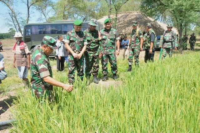 Aster Panglima TNI : Cetak Sawah Bernilai Strategis
