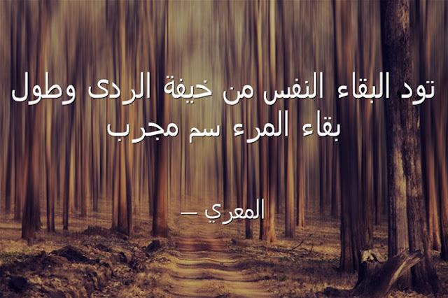 حكم و كلمات مأثورة للشاعر ابى العلاء المعرى الفيلسوف