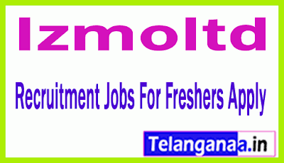 Izmoltd Recruitment Jobs For Freshers Apply