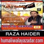 http://audionohay.blogspot.com/2014/10/raza-haider-nohay-2015.html