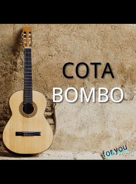 Cota Bombo - Traidora (2019) || download mp3