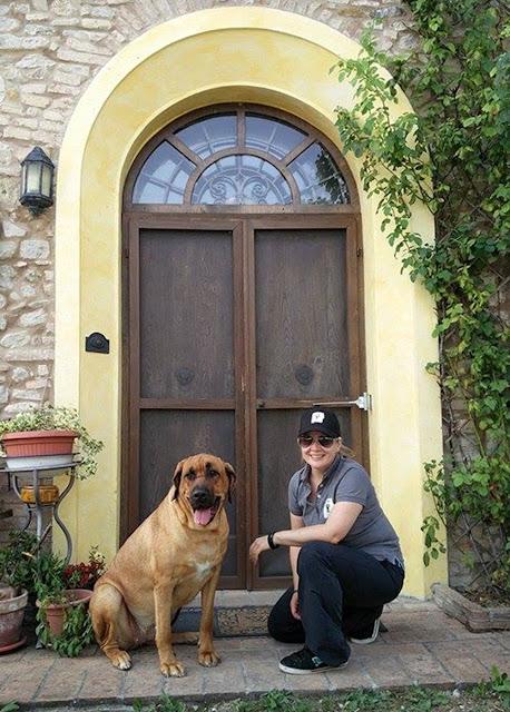 Bologna, Valsamoggia - Viinitarhoja ja koirahommia 19