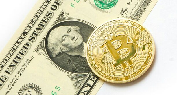 How to invest in bitcoin startups