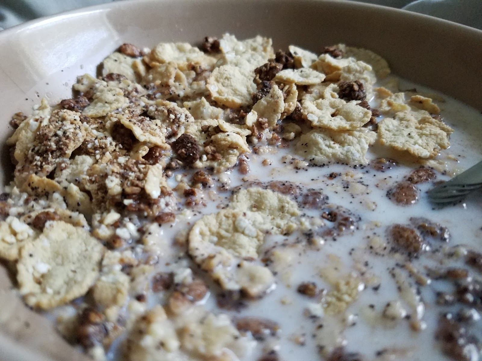Twisted chocolate limited edition products by giant foodstores the cereal was great it was rich with chocolate yummy goodness and it tasted healthy it didnt get soggy fast and is a well developed product ccuart Choice Image