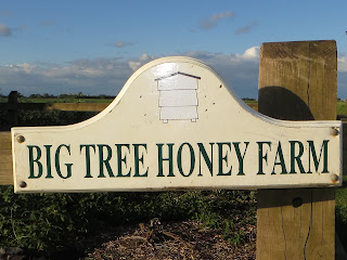 We arrive at Big Tree Honey Farm.