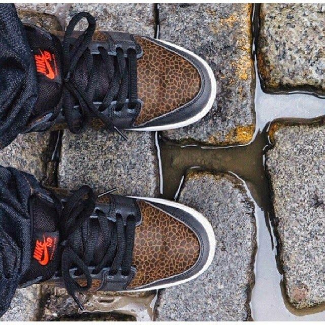 online store 70ac6 47b6d On-foot look of the Dunk low sb Giraffe which just hit the stores few days  ago. Anyone copping them