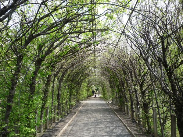 Secret Garden Staten Island