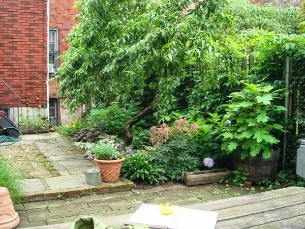 antiguo jardín