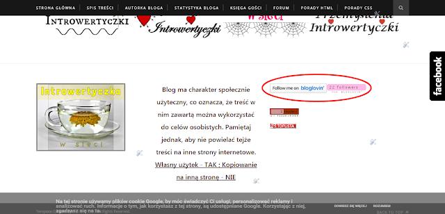 Dawne widgety Bloglovin