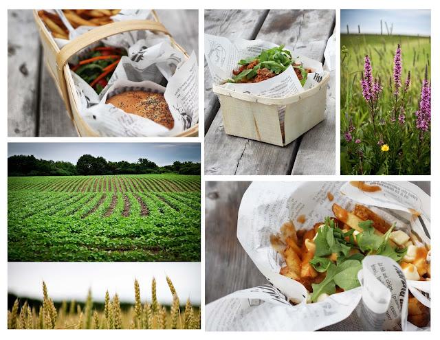 frites,terroir,iledorlean,fermedoc,cassecroute,photoemmanuellericard,emmanuellericardblog,blogantraciteaime